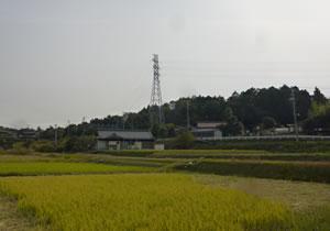 neijitsu5