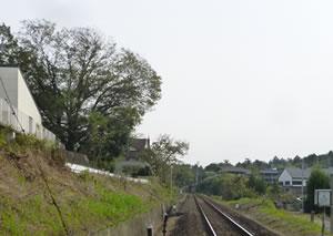 neijitsu201